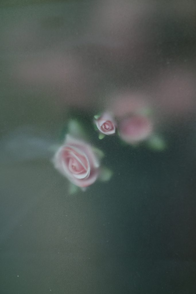 nyc_18_pink-roses